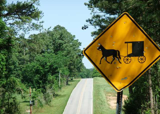 mississippi-Buggy-Sign-Landscape.jpg