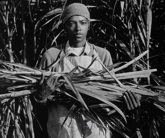 2_McCormick_Joyce_Priestly_Bessie_K_Plantation_1980's_.jpg