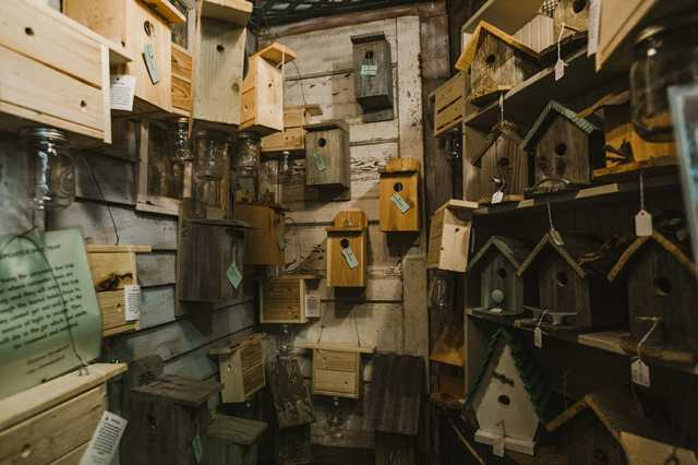 denhamsprings_birdhouses.jpg