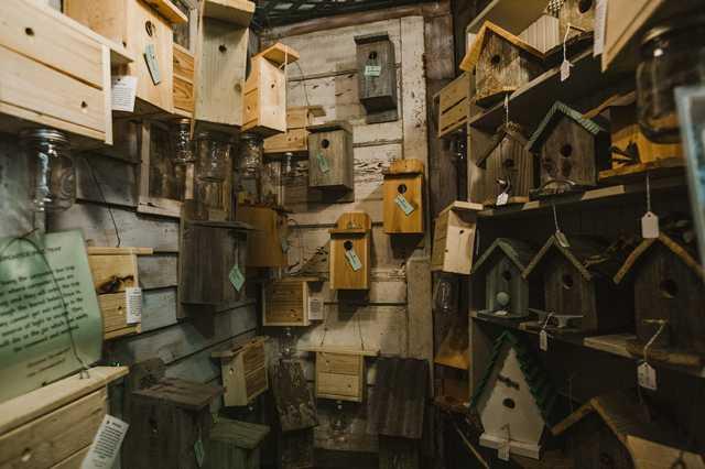 denhamsprings_birdhouses.jpg