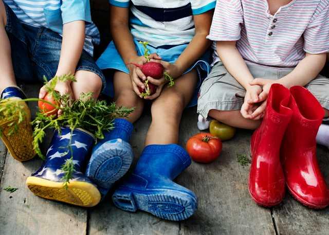 group-of-kindergarten-kids-little-farmers-P7WKHLK.jpg