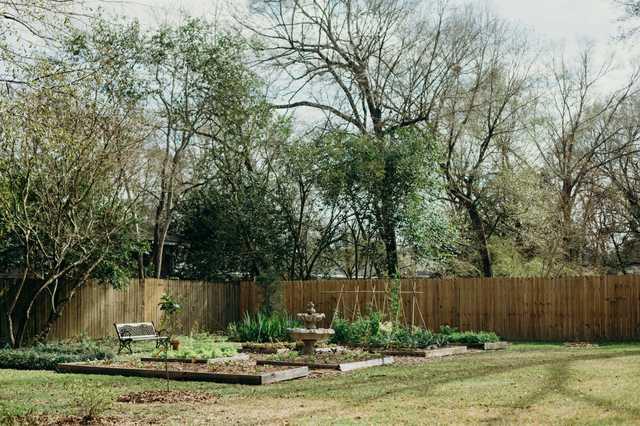 lee-rouse-backyard.jpg
