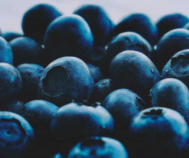 berries_blueberries_close_up_colors_delicious_eating_healthy_fresh_fresh_fruit-1519031.jpg