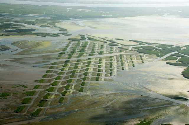 coast-aerial-jonathan-olivier.jpg