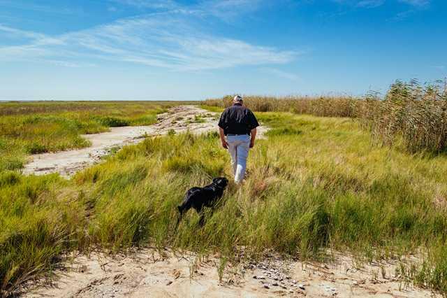 coastal-hunter-walking.jpg