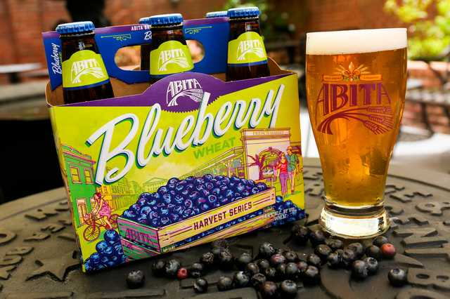 Blueberry-with-Blueberries-3.jpg
