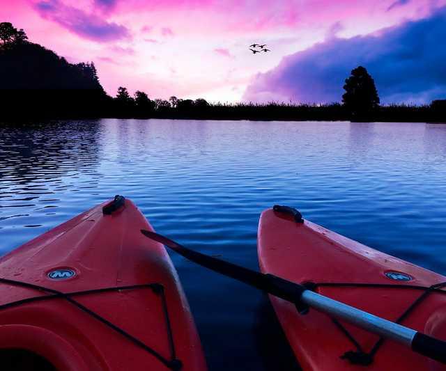 kayaks-2728181_960_720.jpg