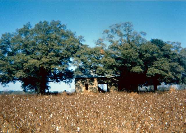 William-Christenberry,-Abandoned-House-in-Field-(View-II),-near-Montgomery,-AL,-1971,-Chromogenic-print,-3.25-x-5-inches,-Ogden-Museum-of-Southern-Art,-Gift-of-the-Roger-H.-Ogden-Collection.jpg