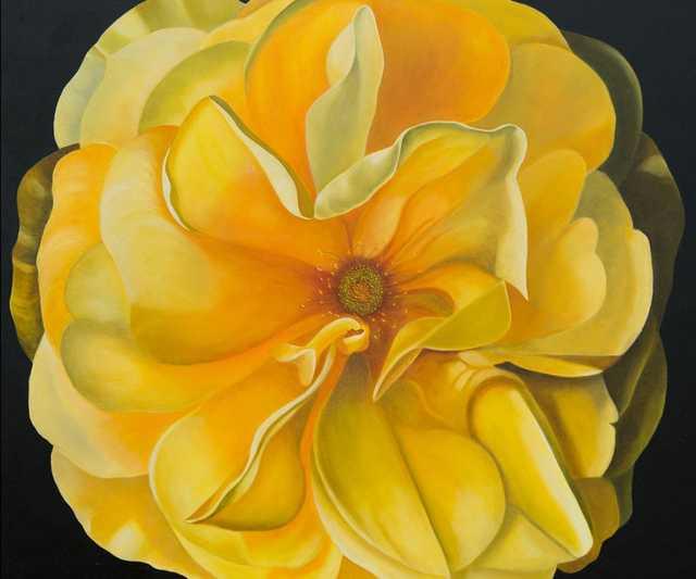 Bloom-2020-at-Norton-pic.jpg