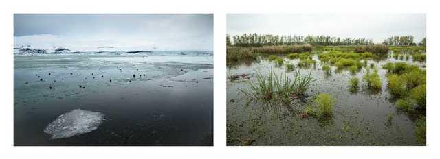 tina freeman lamentations art photography march 2020