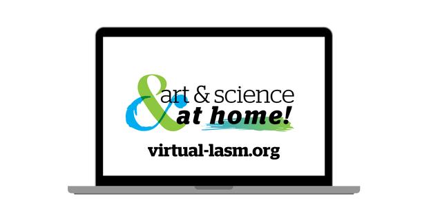 Virtual LASM