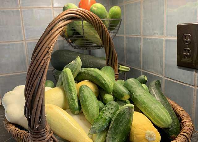 cucumbers cropped.jpg