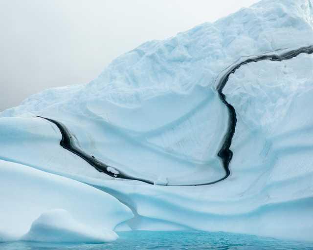 20130815_Bear_Island_Greenland_532.jpg