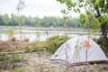 rivergator1.jpg