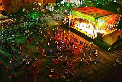 festivalsub1.jpg