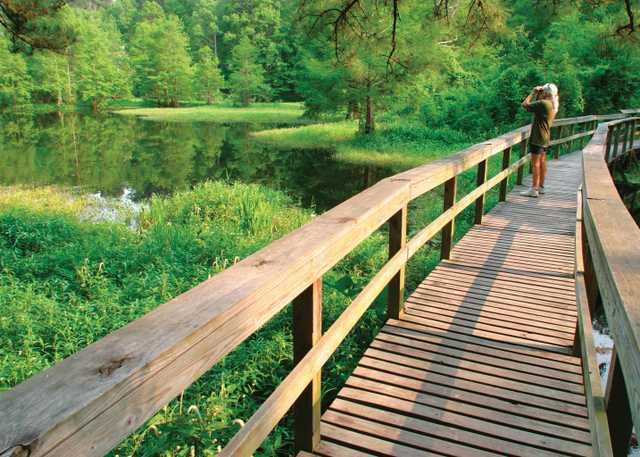 4Northlake-Nature-Center-Mandeville-St.-Tammany-Parish-courtesy-NewOrleansNorthshore.com.jpg