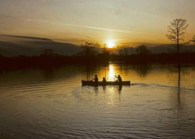 Canoeing on the Atchafalaya