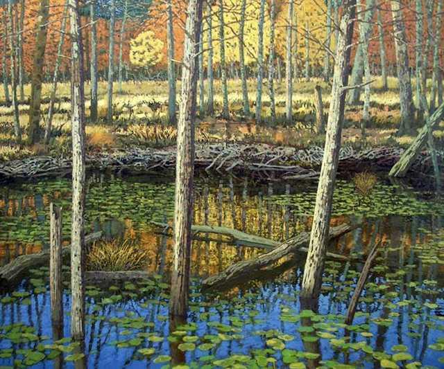 bill iles beaver pond crop.jpg