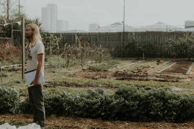 permaculture-jordan.jpg