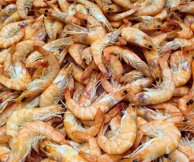 shrimp-727214_1920.jpg