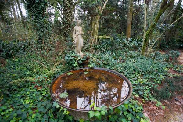 LSU9712-Windrush-Gardens.jpg