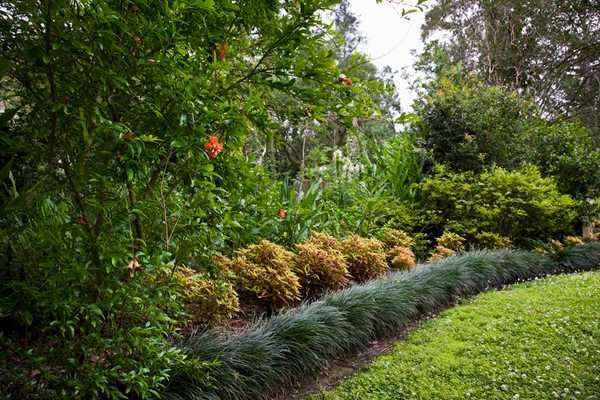 LSU8684-Windrush-Gardens.jpg