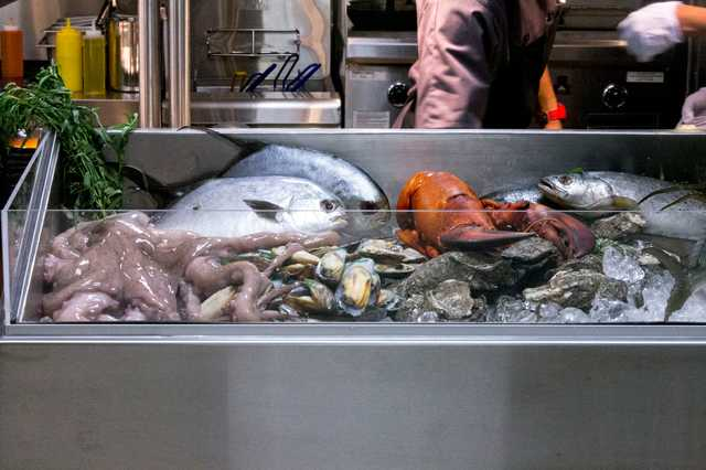 briquette-fish.jpg