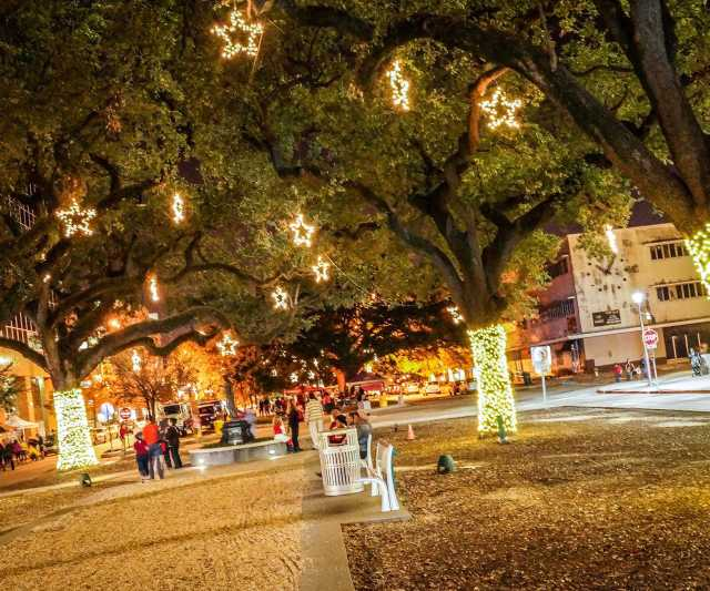 Festival-of-Lights-Photo-Credit-Arts-Council-of-Baton-Rouge-(8).jpg